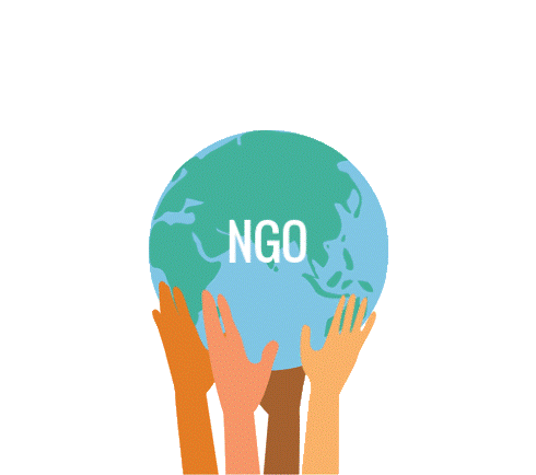 ngo - pic query